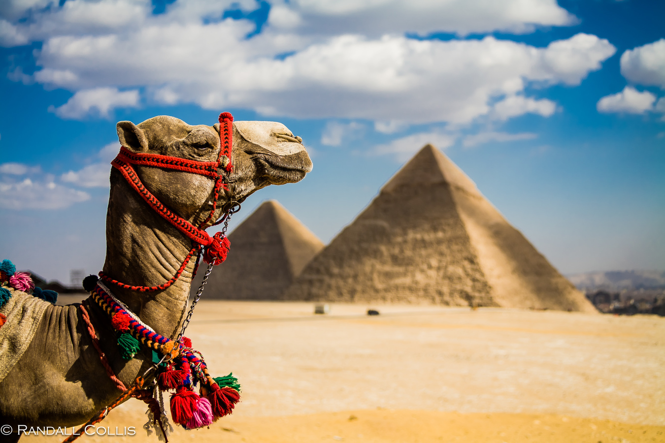 Blogger | Explore Egypt - Discover 10 cities in Egypt
