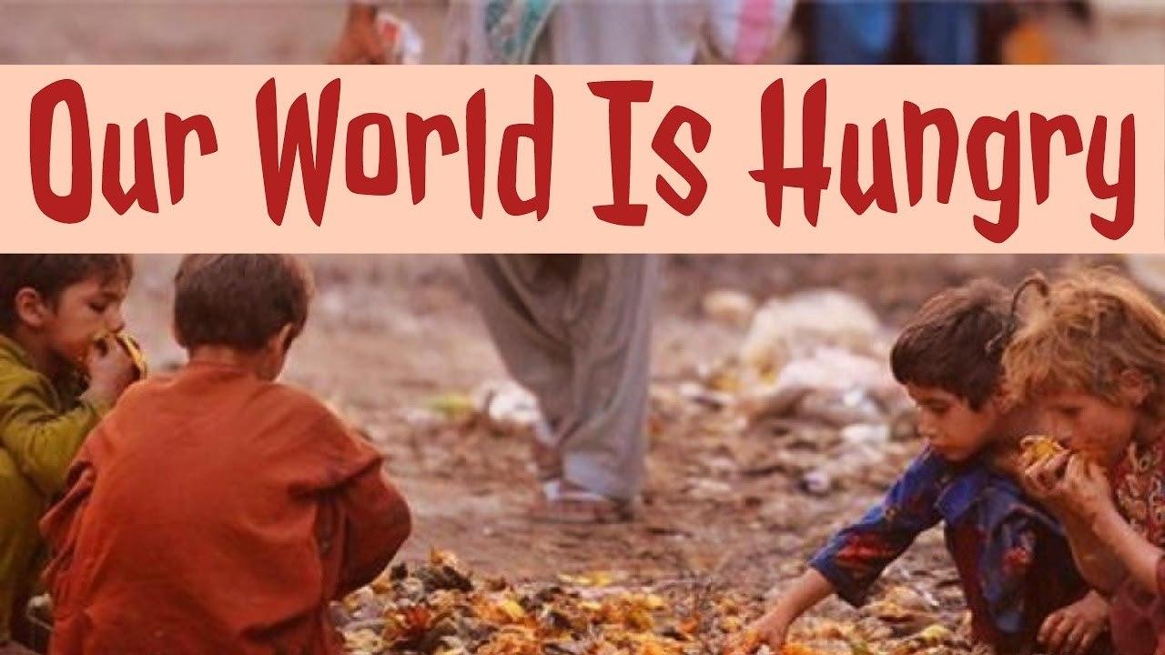 ZERO Hunger Volunteer in Egypt