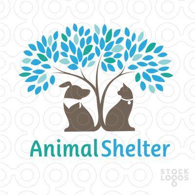 Animal Shelter | Life on Land
