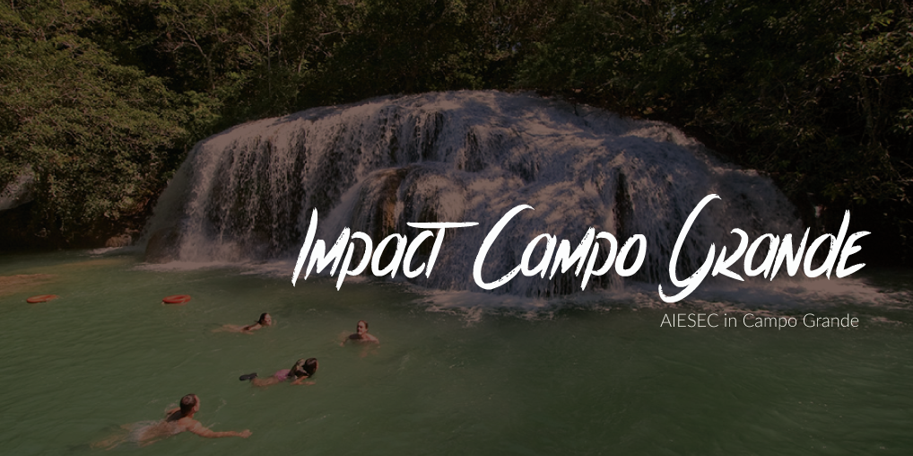 Impact with Education - Brazil