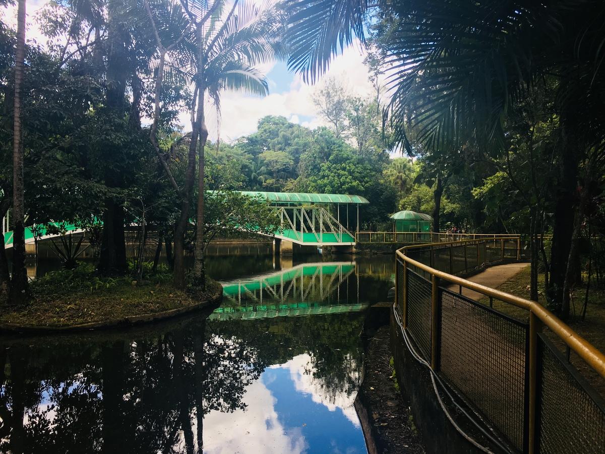 Brazil- Planet Heroes- Environmental Education