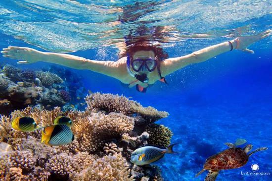 Explore & Promote Tourism in Egypt |XplorEgy