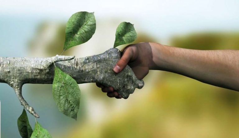 Join The Green Side - Environmental awareness