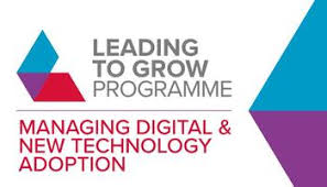 Leading to Grow Programme - for microbusinesses