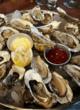samui oysters