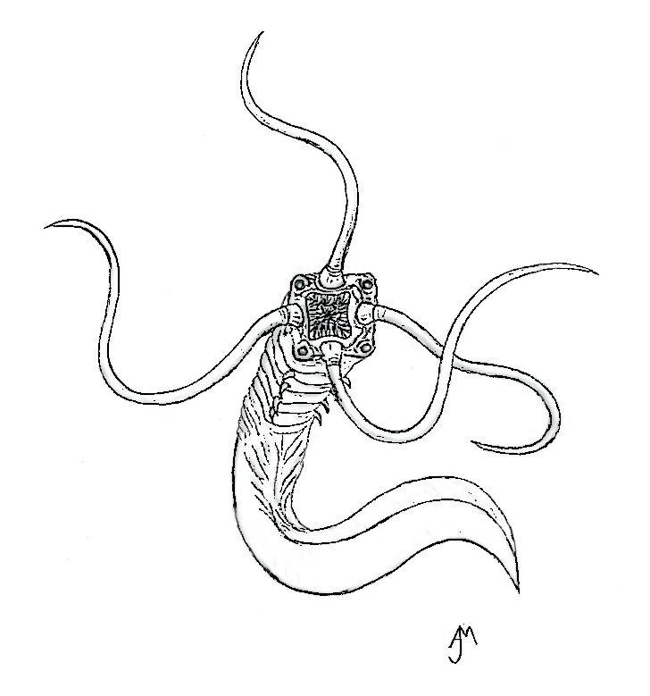 KabulehkanjaInkSketch