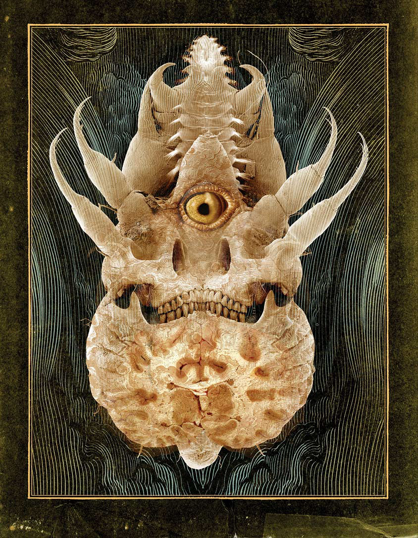 The Bestiary by Ivica Stevanovic back
