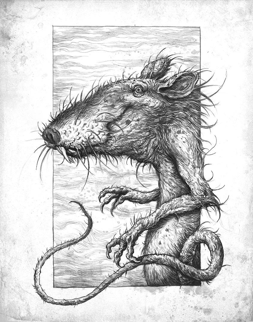 Ivica Stevanovic - evil rat