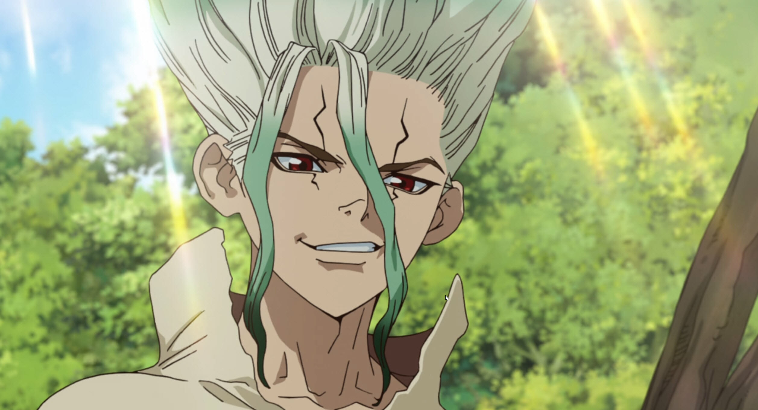 Senku from Dr Stone