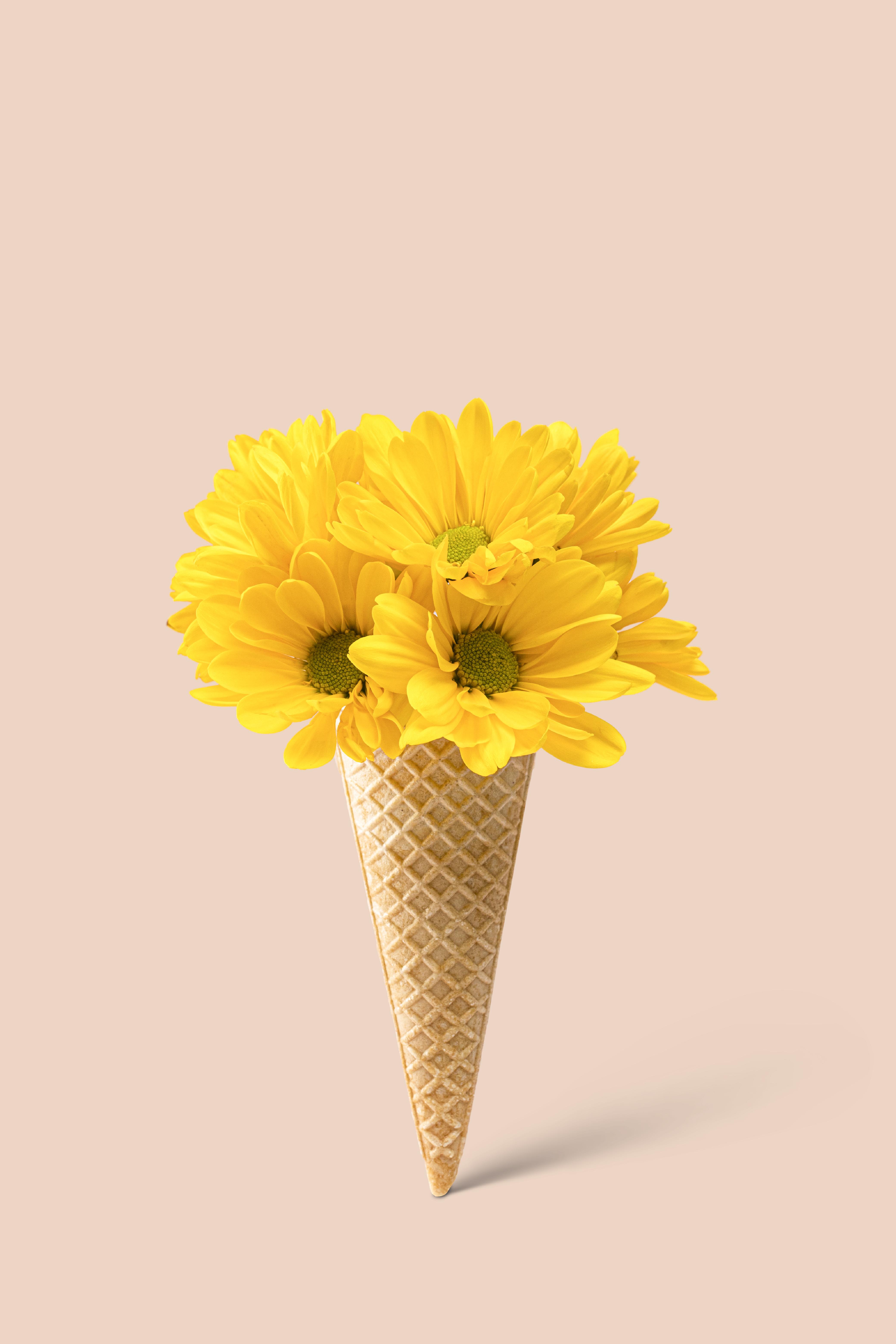 Ice Cream Flower Flavor Cones