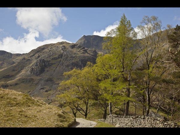 Path along Great Langdale Valley