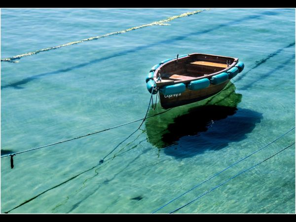Rowing boat tied up