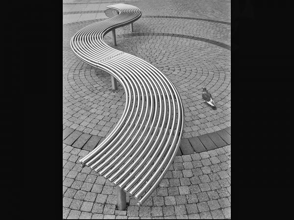 Curves in the square