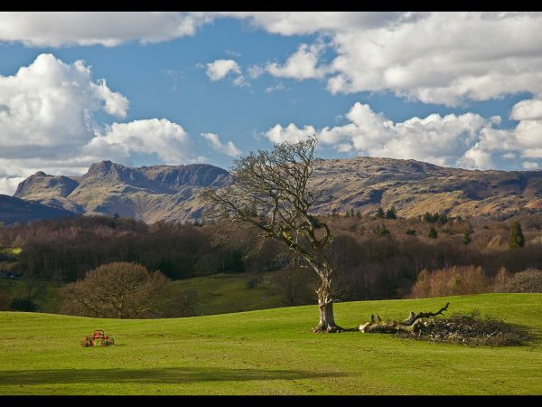 View towards Langdale Pikes
