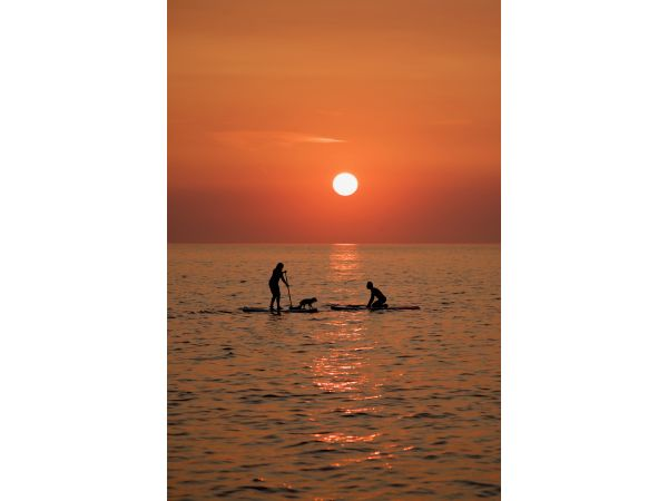 Paddle boards at sunset