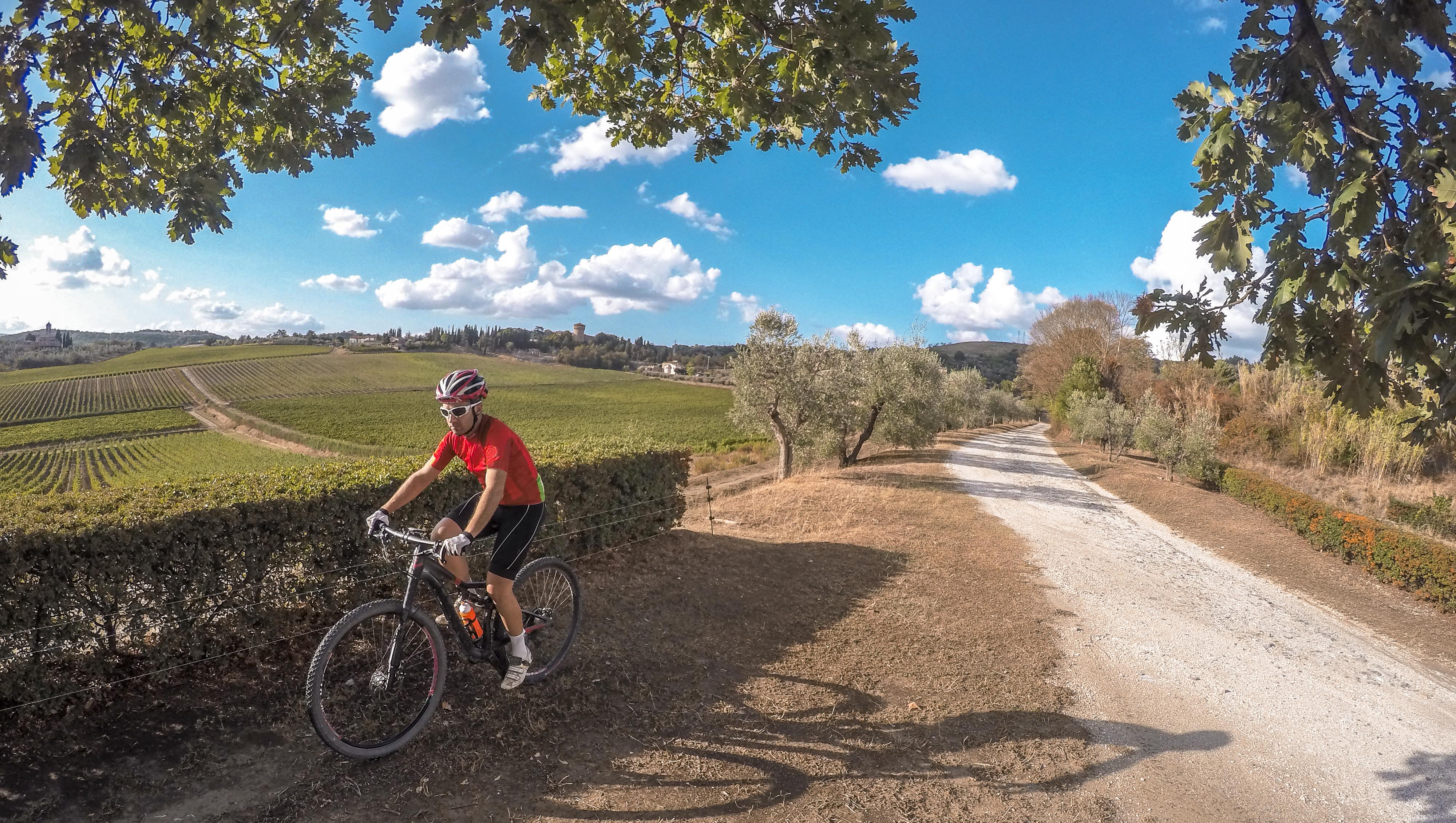 Cyclist Tuscan Road
