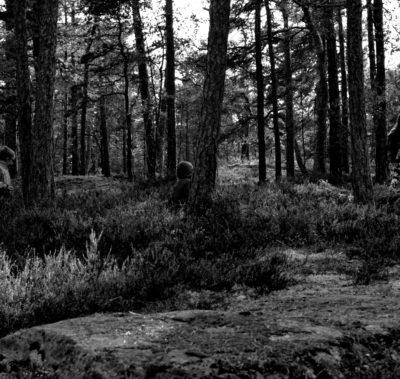 Kvinna läser i skogen svartvitt