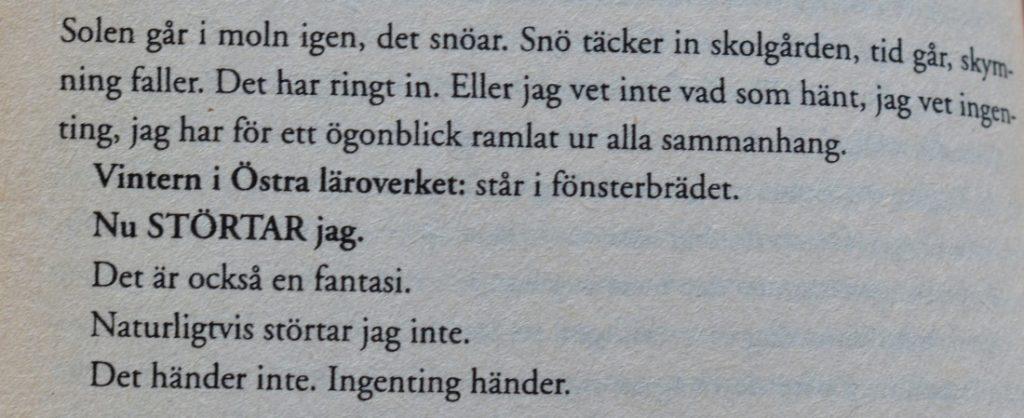Diva av Monika Fagerholm citat.