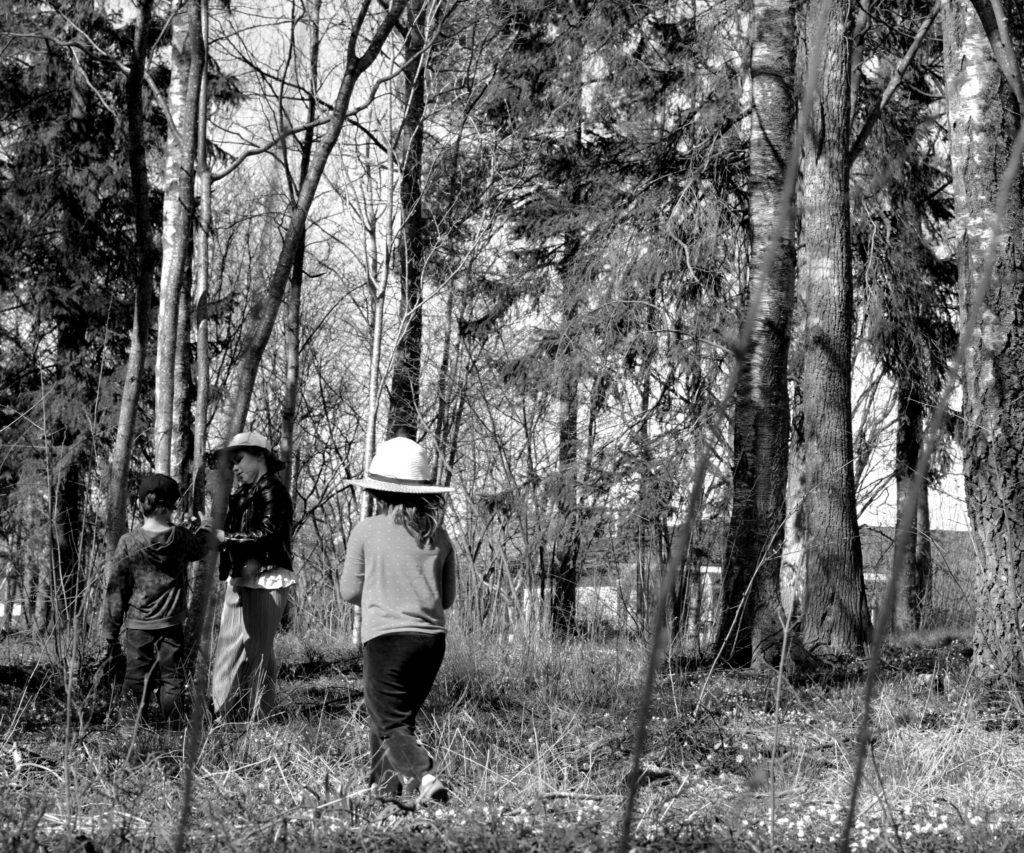 Svartvit bild på barn som plockar blommor i skogen.
