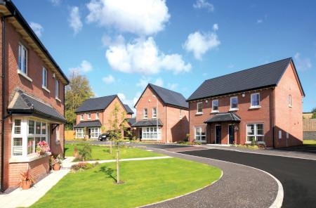 Millmount Village houses 1