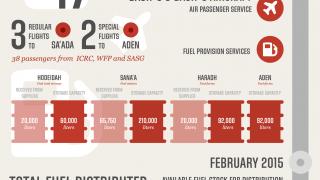 Media Image : logistics_cluster_yemen_infographic_150303.png