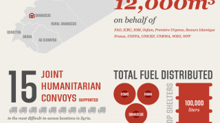 Syria Operation Overview 1 January - 31 May 2015