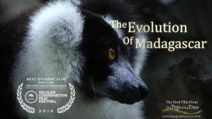 The Evolution of Madagascar