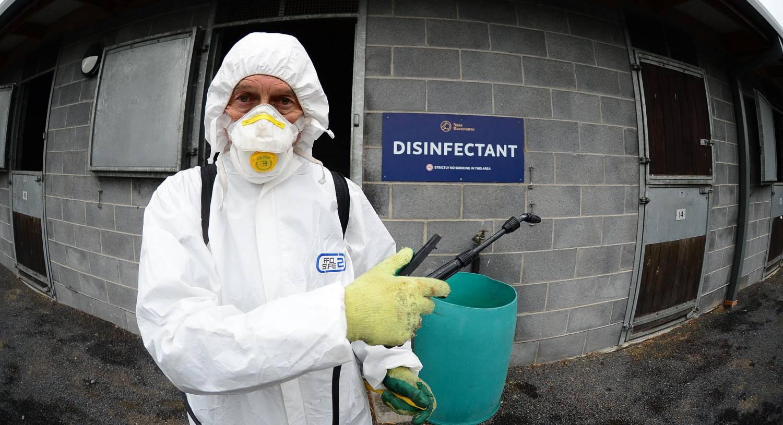 Over half of Irish horse racing fixtures lost to coronavirus lockdown will be saved