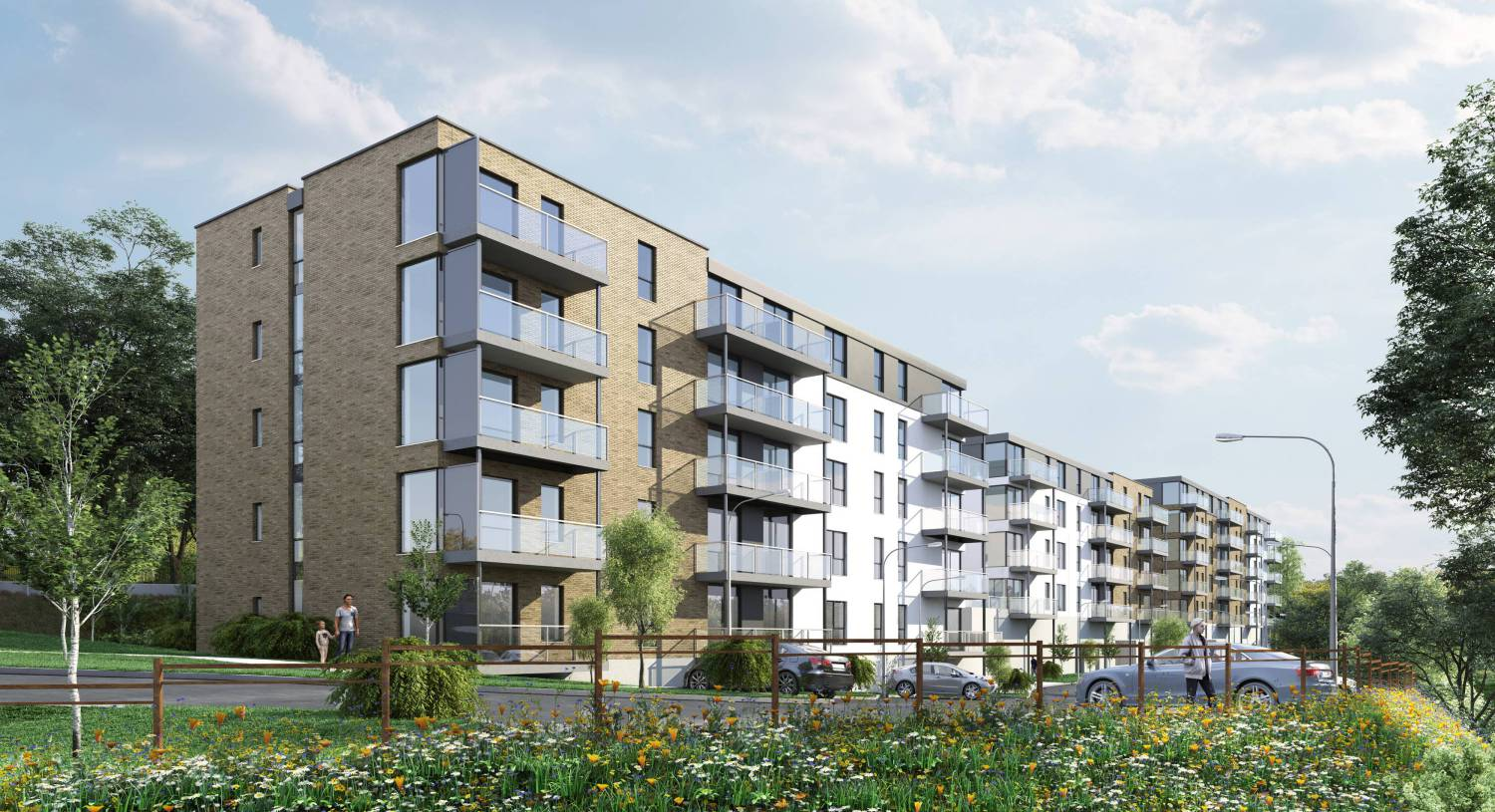 Designing future homes for private rented sector
