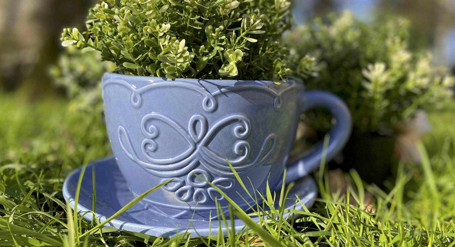 Wish List: Embrace the outdoors with lovely lanterns, cute ceramics and designer jugs