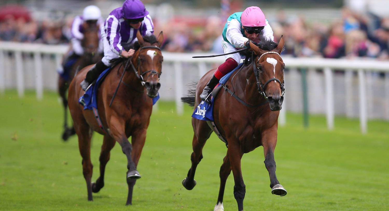 Plans for Enable very much on hold