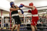 GALLERY: Swindon Brunel ABC Show, Ballagh v Baldwin