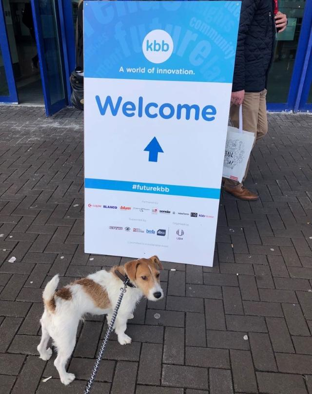 Bob our rescue dog went to KBB event to see if there was any kitchens exiting the showroom. However Bob was surprised when he was presented with a sausage instead of a Kitchen today.
