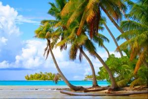 Beach in Rangiroa atoll, French Polynesia