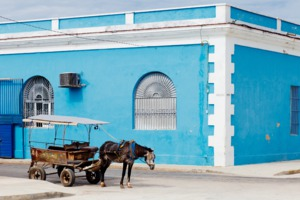 Horse and carriage in Cienfuegos, Cuba