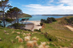 View of Native Island from Stewart Island, New Zealand