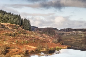 Loch Torr on the Isle of Mull, Scotland