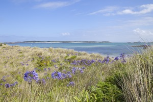Pentle Bay on Tresco, Isles of Scilly