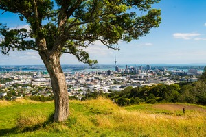 Auckland, New Zealand - Panoramic View