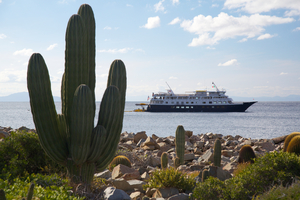 UnCruise Adventures in the Sea of Cortez