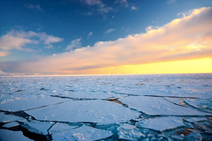 Pack ice in the Arctic