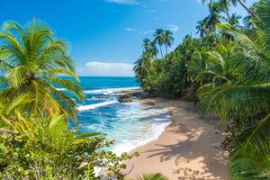 Manzanillo beach near Puerto Limon, Costa Rica