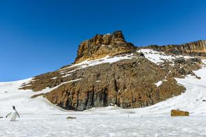 Brown Bluff, Antarctica