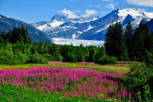 Mendenhall Glacier, near Juneau, Alaska