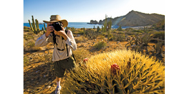 Expedition cruiser with camera, a key part of your Sea of Cortez packing list
