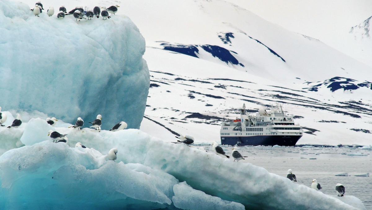 Silver Explorer - Arctic & Svalbard cruise