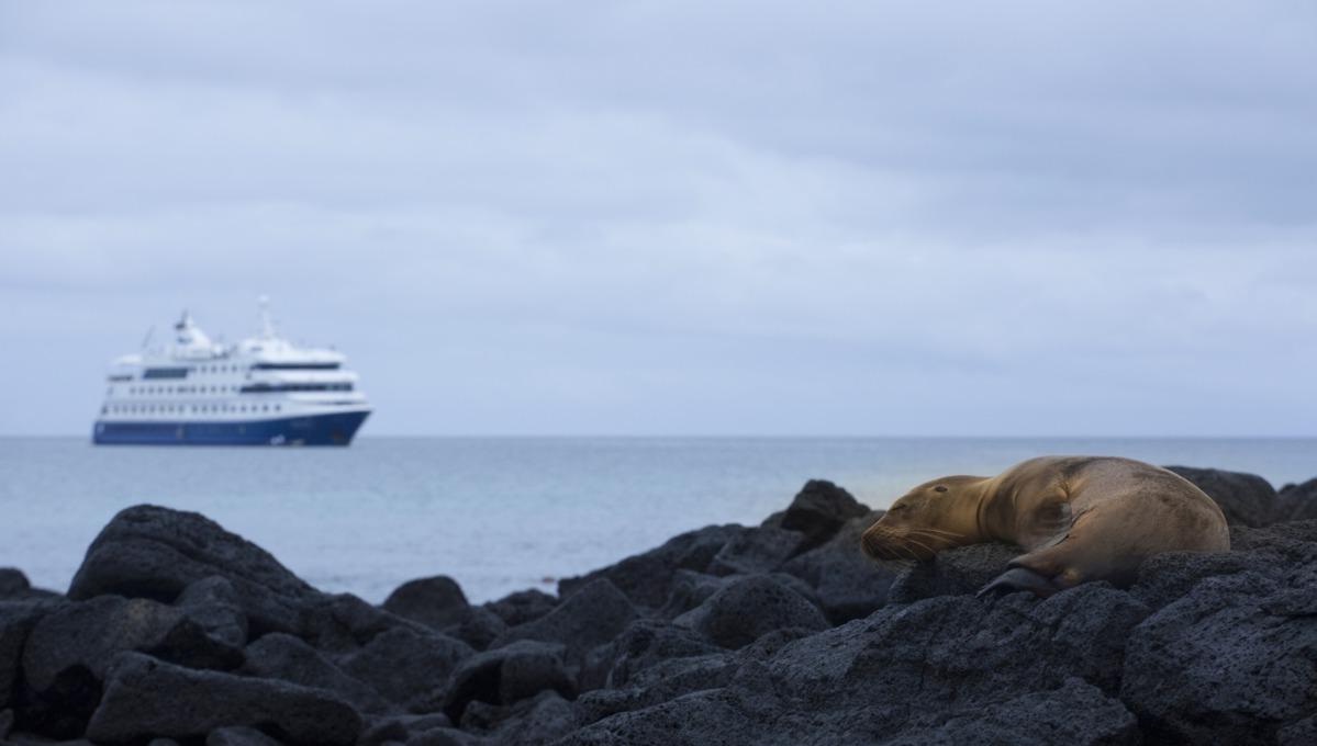 Metropolitan Touring - Galapagos expedition cruises