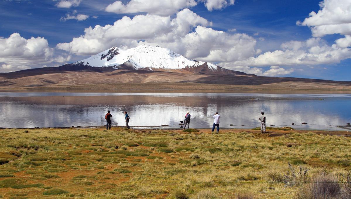 Central & South America cruises - Chungara Lake in Chile