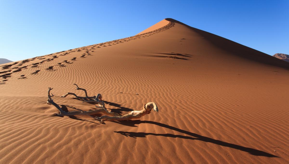 West Africa cruises - Sossusvlei Dune, Namibia
