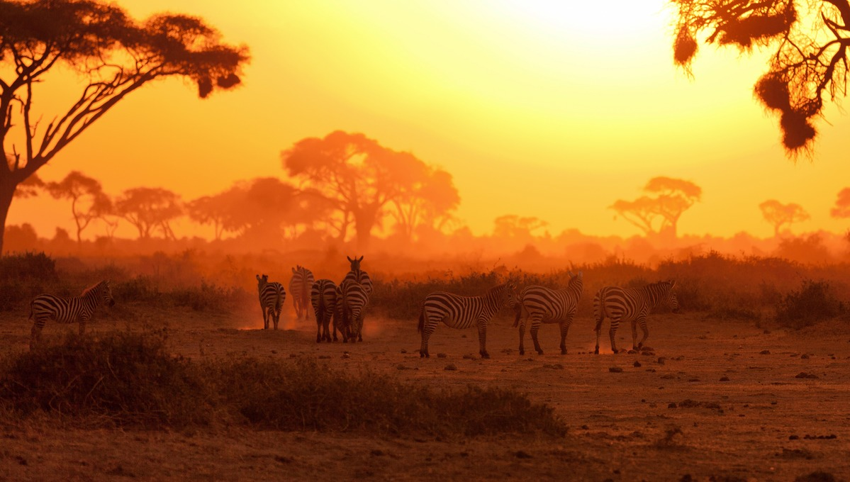 East Africa & Indian Ocean expedition cruises - Sunset over the Masai Mara